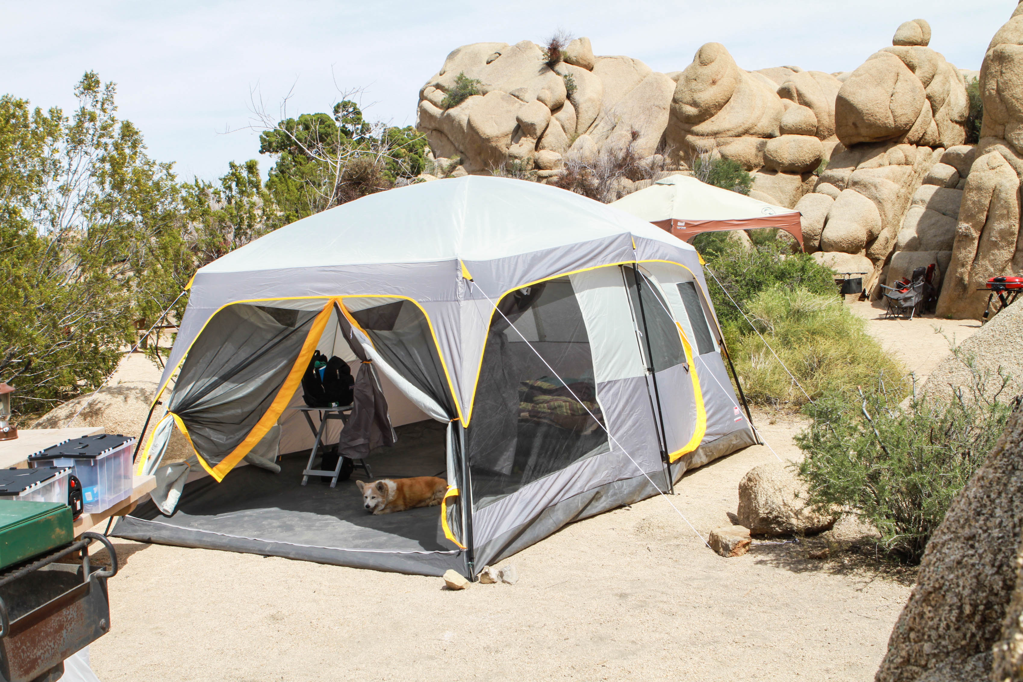 IMG_9369 & Review: Coleman Weathermaster II Screened 10-person 16u2032 X 10u2032 Tent ...