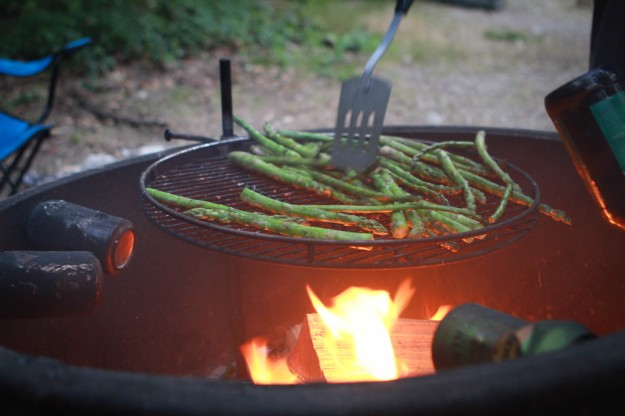 perfect campfire grill